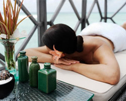 Day Spa and Wellness Resort Reviews