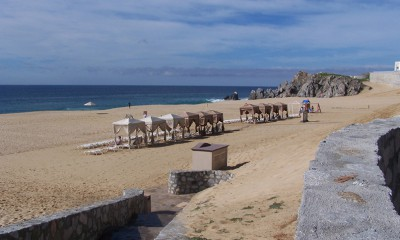 Los Cabos Resort Reviews