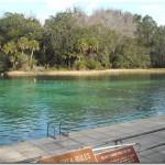 Sandy-Oaks-RV-Park-Florida-1