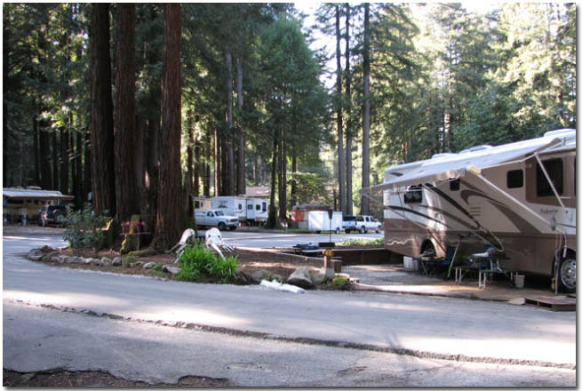 Santa Cruz Redwoods Rv Resort Rv Campground Reviews