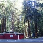 Santa-Cruz-Redwoods-RV-Resort