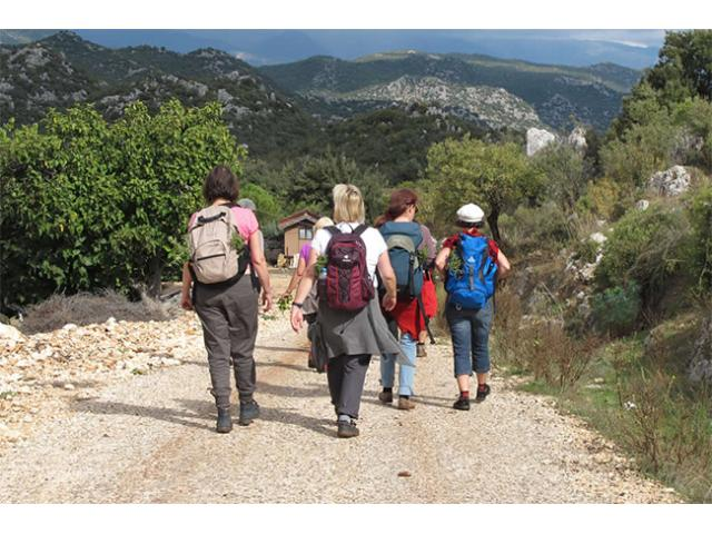 Group Hiking Trips