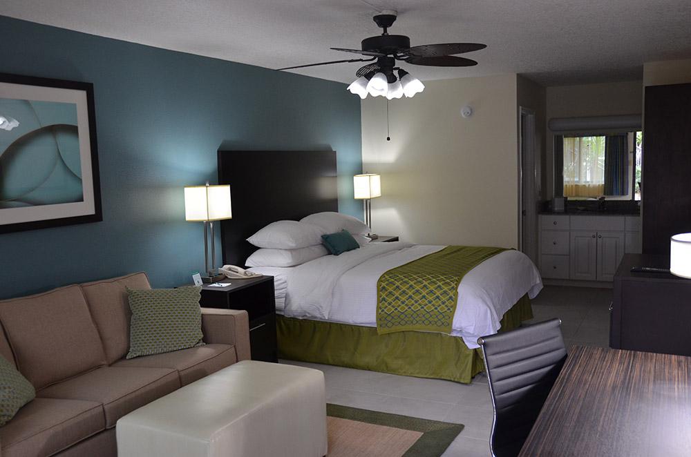 Cypress Cove King Hotel Room