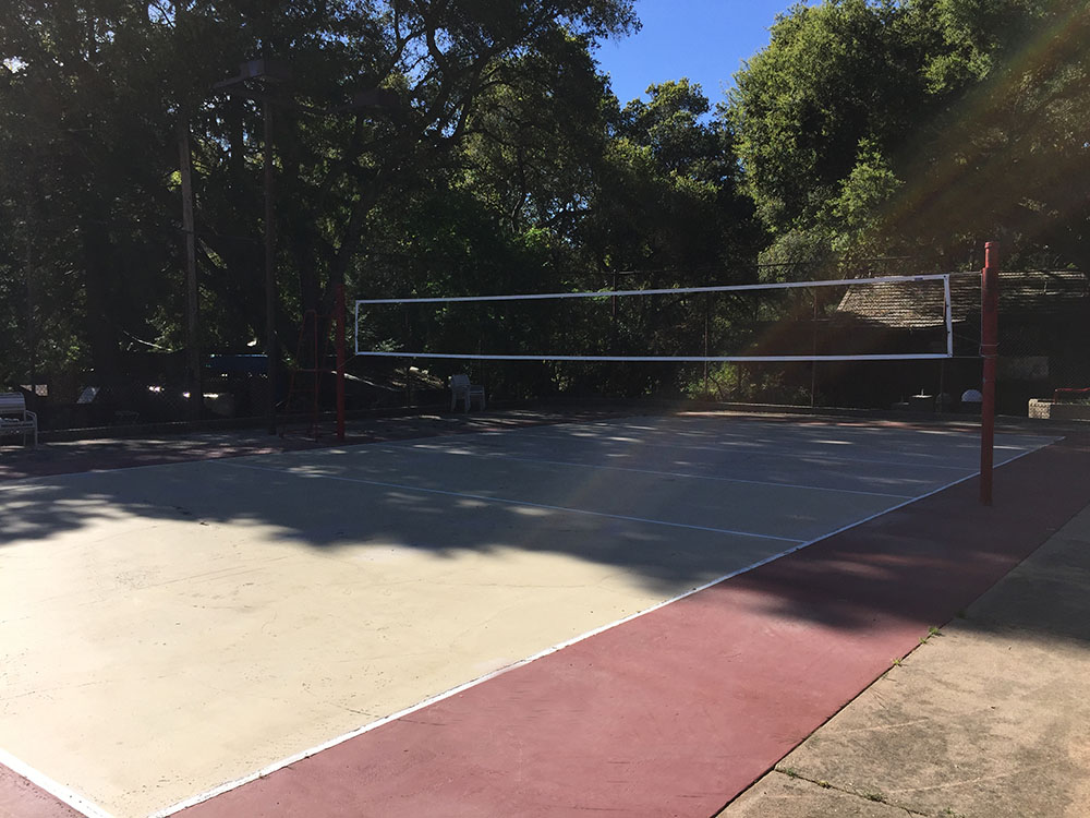 Lupin Lodge Nude Volleyball Court
