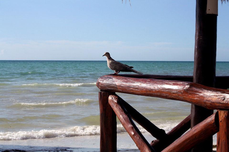 Mexico Yucatan Holbox Island Beach