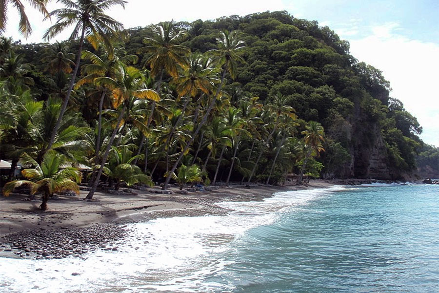 St Lucia Anse Mamin Beach