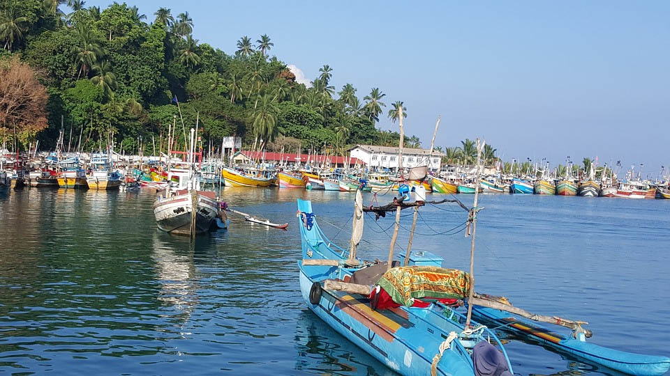Sri Lanka Fishing Harbor