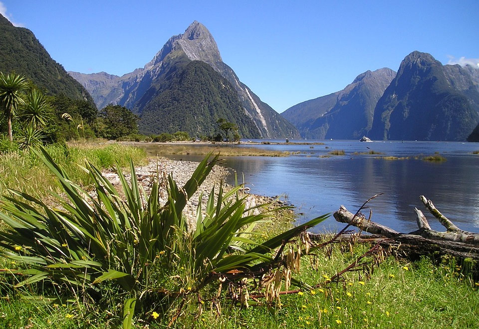 Fiordland South Island New Zealand