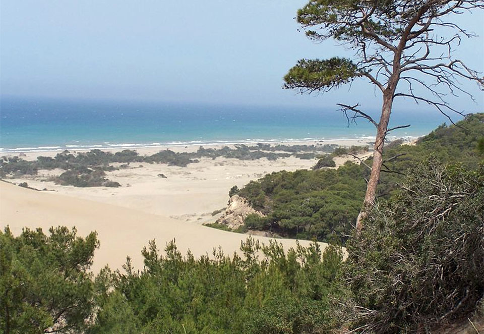 Patara Beach Turkey