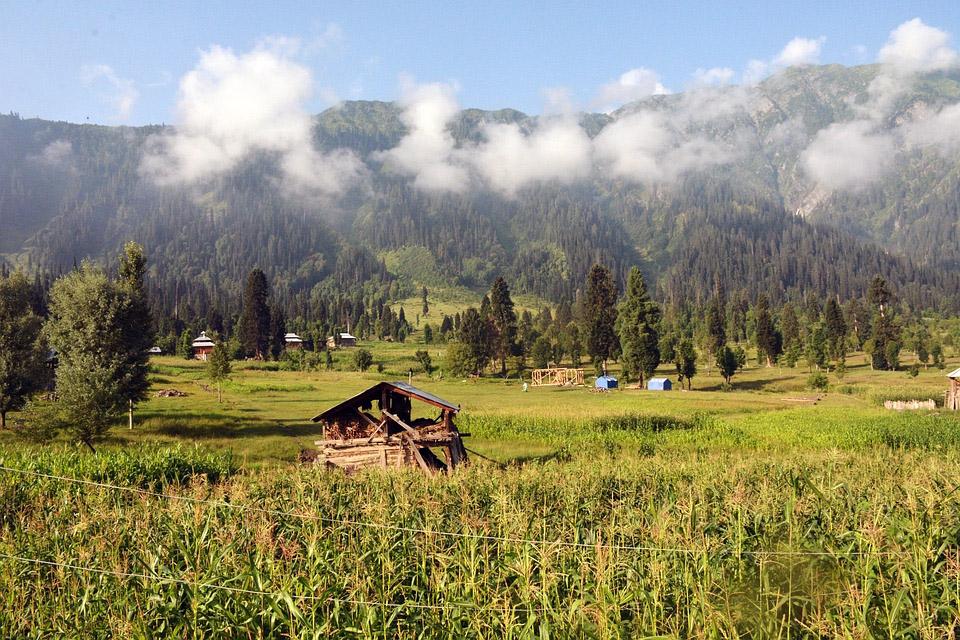 Kel Mountain Kashmir