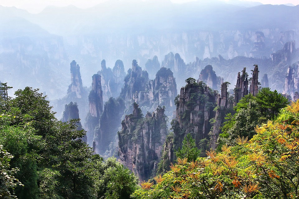 China Zhangjiajie Forest