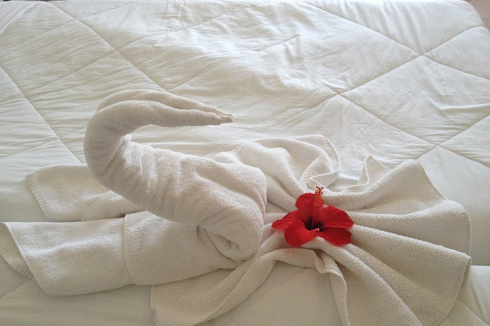 Pure Cotton Hotel Bedding